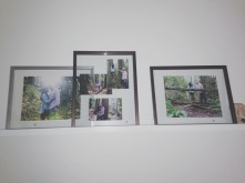 IKEA Ribba photo gallery ledge [$14.99]